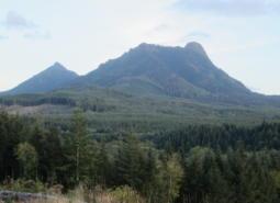 Saddle Mountain in Oregon's Coast Range ecoregion.