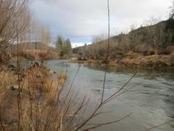 The Nestucca River in Oregon's Coast Range Ecoregion.
