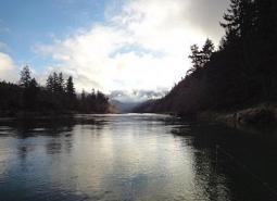 COA_042_Umpqua River_Todd Lum_ODFW