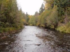 The Whychus Creek in Oregon's East Cascade Ecoregion.