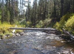 Long Creek/Coyote Creek/Silver Creek area