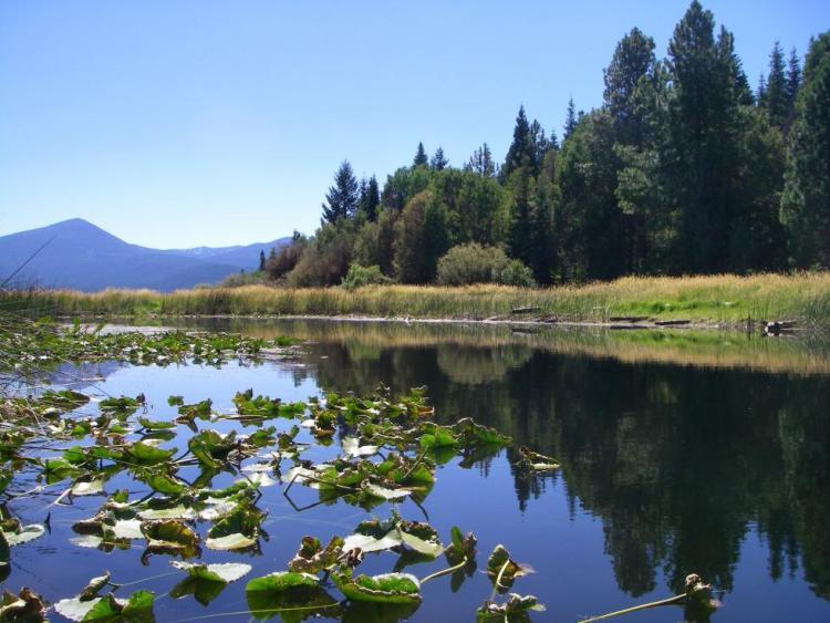 Upper Klamath Lake