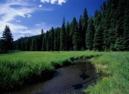 Middle Fork John Day River