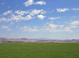 Photo of the Jordan Creek Wetlands COA.